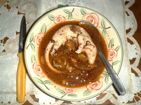 This pangolin fetus is considered a delicacy. Photo courtesy of TRAFFIC.