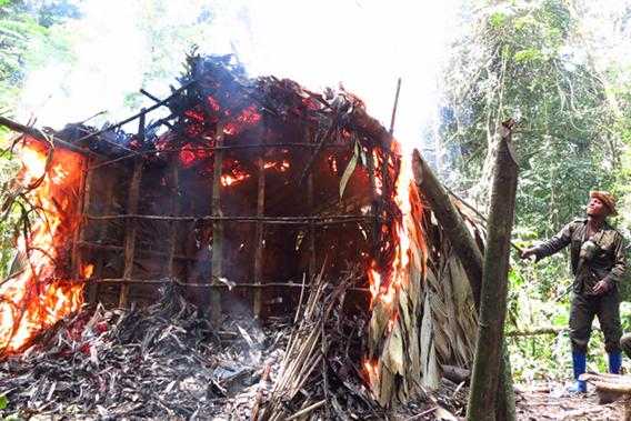 Rangers burn a poacher's camp. Photo by: Roger Peet.