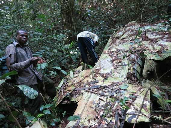 Discovering a downed plane in the forest. Photo by: Roger Peet.