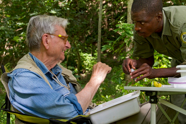E.O. Wilson collecting insects during the BioBlitz on Mount Gorongosa. Photo by: Piotr Naskrecki.
