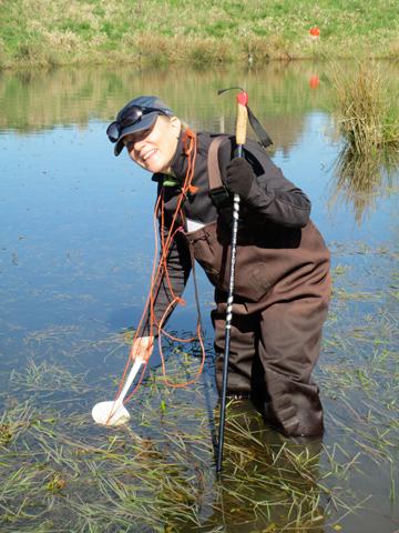 Warner counting amphibian egg masses in a wetland. Photo courtesy of Anne Warner.