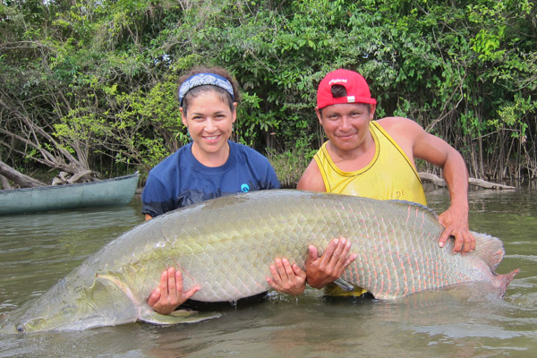 Lesley de Souza and Davis Edwards with a tagged arapaima. Photo credit: © Shedd Aquarium/Carlson Haynes.