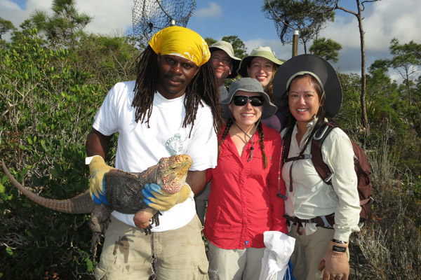 Citizen science team on Andros Island with a Andros rock iguana (Cyclura cychlura cychlura), listed as Endangered. Photo by: ©Shedd Aquarium/Chuck Knapp.
