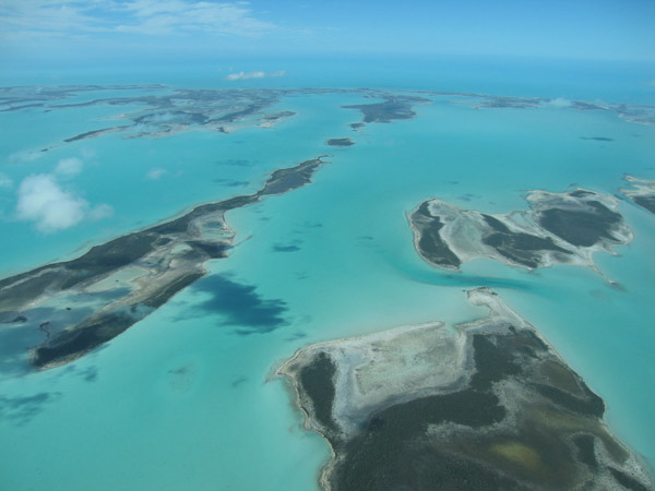 Aerial view of Andros Island, an archipelago home to the Endangered Andros rock iguana. Photo by: ©Shedd Aquarium/Chuck Knapp.
