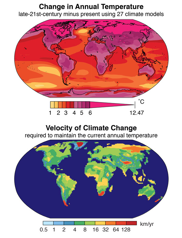Top: The change in annual temperature projected for the late 21st century using simulations from 27 global climate models. The change is calculated as the 2081-2100 mean minus the 1986-2005 mean. Bottom: The velocity of climate change required to maintain the current annual temperature should the late-21st-century climate change occur. The velocity is calculated foreach location by identifying the closest location in the future climate that has the same annual temperature as the starting location has in the present climate. Image courtesy of Noah Diffenbaugh.