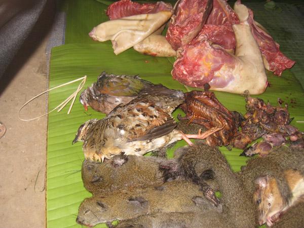 Mamíferos silvestres, aves y carne sacrificada en un mercado de Laos. Foto por: Daosavanh Sanamxay.