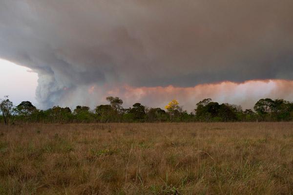 Fuego cerca de la reserva Foto de: Rolex Awards/Kirsten Holst.