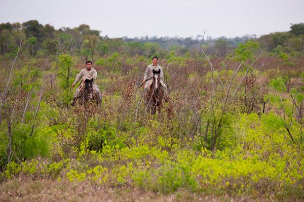 Guardas forestales en el cerrado  Foto de:  Rolex Awards / Kirsten Holst.