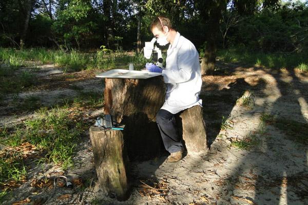 Investigador trabajando en el campo.  Foto de: John Smit.