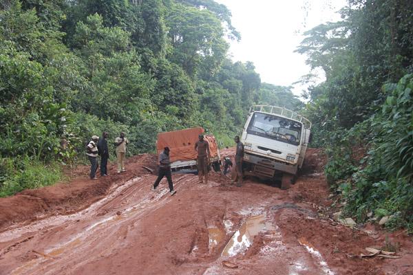 Route vers Epulu, à l'intérieur de la Réserve Naturelle des Okapis. Photo gracieusement autorisée par le Projet de Conservation de l'Okapi.