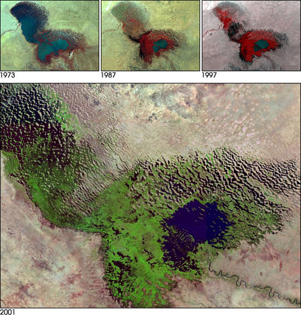 From 1963 to 1998 Lake Chad shrunk by an astounding 95 percent. It has since recovered slightly, but is no-where near its historical size. Photo by: NASA.