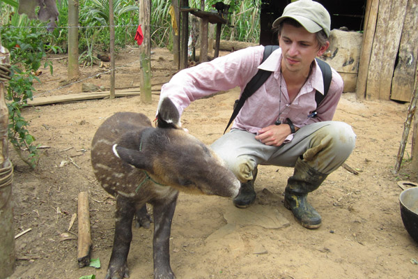 Chris Jordan helps to confiscate a baby tapir in Nicaragua. Jordan has recently started an indiegogo fundraiser to help raise money for a tapir rehabilitation center on the Caribbean Coast for animals likes this one. Photo courtesy of Chris Jordan. Photo courtesy of Chris Jordan.