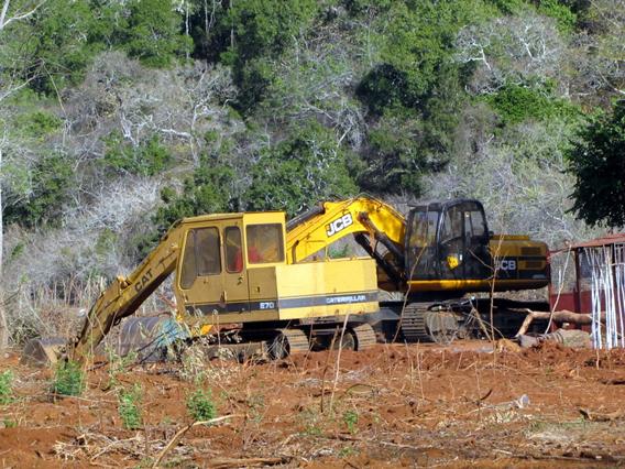 Clearing of elephant habitat at the edge of Yala National Park in Sri Lanka. Photo courtesy of the Environmental Foundation Limited (EFL).
