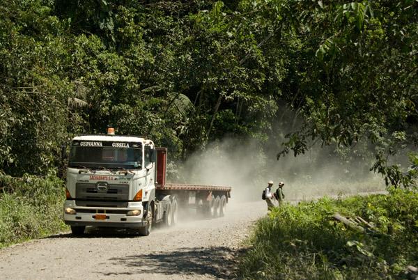 El autor principal, Shawn F. McCracken, y un asistente buscando bromelias Aechmea zebrina a lo largo de una carretera petrolífera en la Amazonia Ecuatorial. Foto de: Bejat McCracken.
