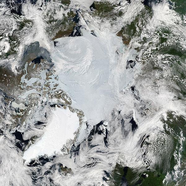 MODIS satellite image of the Arctic. Photo by: NASA.