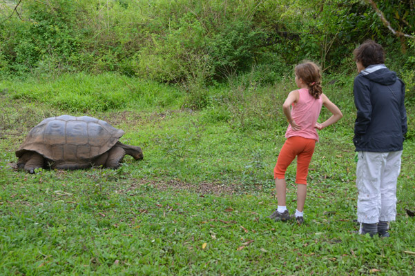 Jamie and Lauri with a Galapagos giant tortoise. Photo courtesy of the Kraft family.