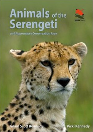 Animals of the Serengeti – book review