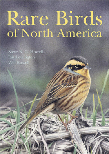 Rare Birds of North America – book review