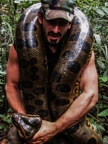 A female anaconda that JJ Durand and Paul Rosolie caught, just before releasing her back to the wild. Photo courtesy of Paul Rosolie.