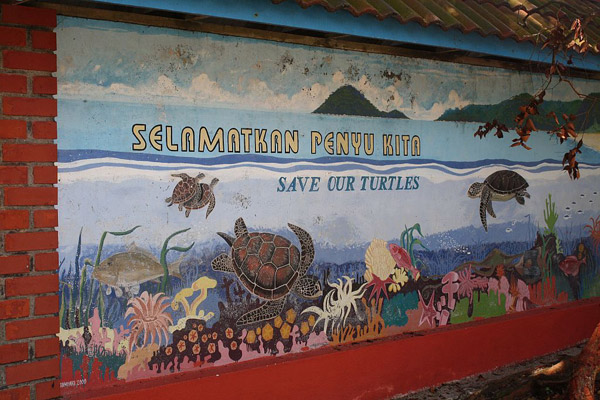 Artwork at Turtle Conservation and Information Center at Pasir Panjang. Photo by: Nadine Ruppert.
