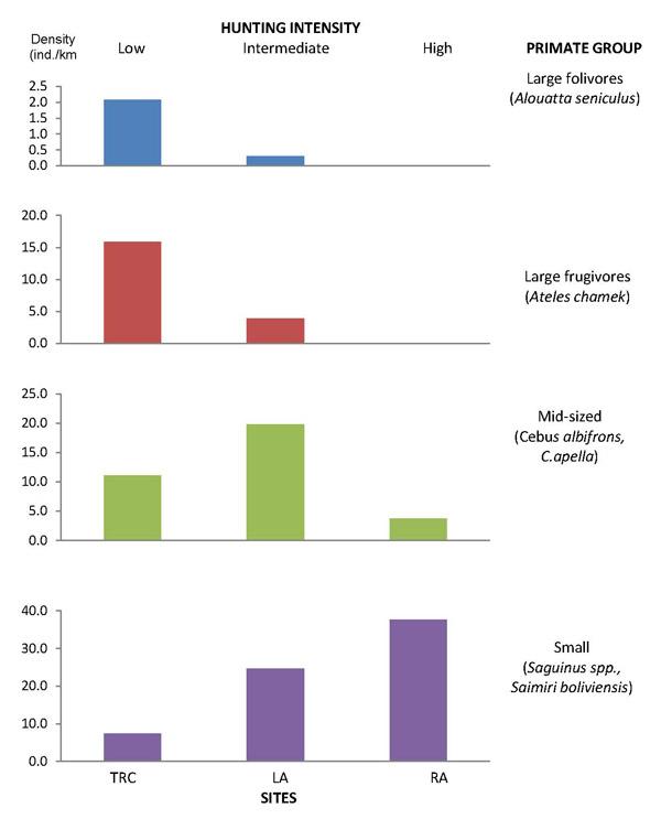 Tablas de cálculos de densidad de especies chicas, medianas y grandes y de los efectos de la caza sobre el nivel de la población en tres sitios distintos. Generadas por el programa Distancia. Adaptado de Rosin 2012