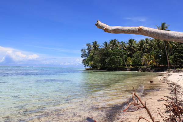 Beach on Woodlark Island. Photo by: Simon Piyuwes.