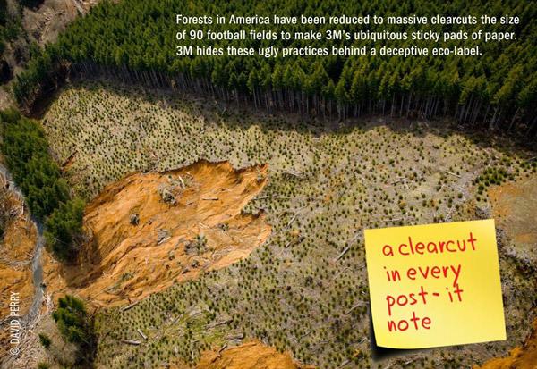 Material de la campaña de ForestEthics contra la póliza forestal de 3M. Imagen por cortesía de ForestEthics.