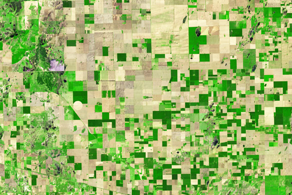 In this wider view, the forest can still be seen in the center. Image by: NASA.