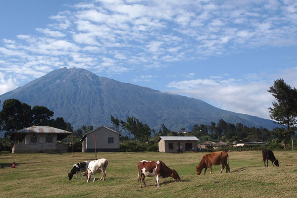 Rural scene in Tanzania. Photo by: Nika Levikov.