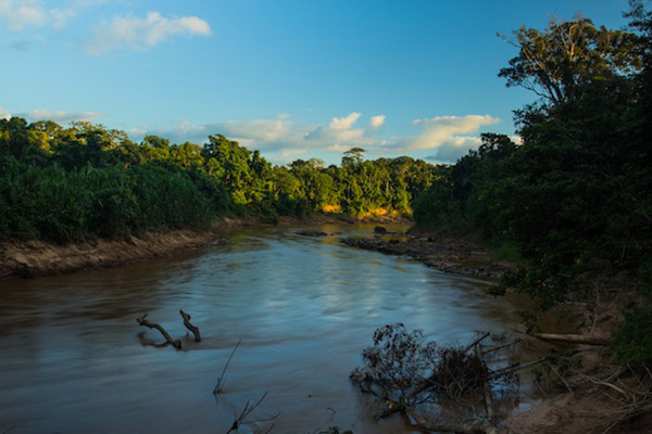 The Las Piedras river meanders through lowland rainforest for 621 kilometers before its waters mix with the Madre de Dios. Photo by: Declan Burley.