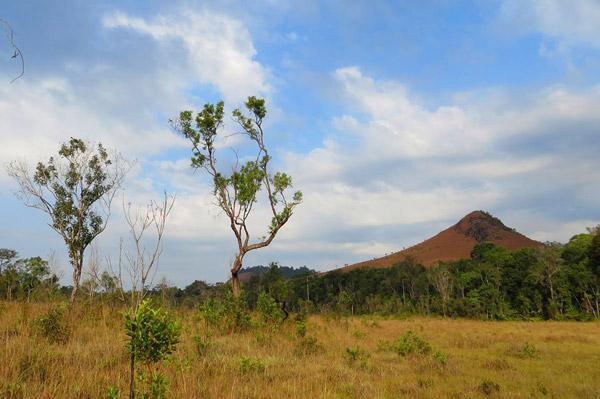 Montagnes Mera s'élevant au-dessus de la prairie de Yak Yeuk à Virachey. Photo de : Howie Nielsen.