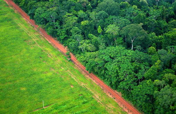 An aerial shot shows the contrast between forest and agricultural landscapes near Rio Branco, Acre, Brazil. Photo by Kate Evans for Center for International Forestry Research (CIFOR).