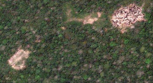 Imágenes de Google Earth de 2006 muestran un claro en el medio de cuatro casas alargadas y campos afectados por la agricultura de tala y quema. Foto de Walker y Hamilton.