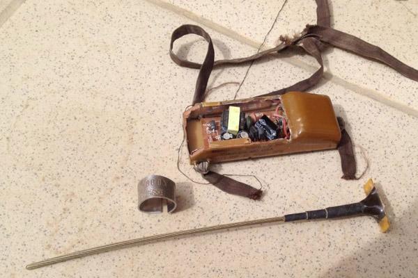 El transmisor dañado de Paschalis. Fotografía de APLORI/Lifeneophron.eu.