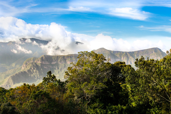 The spectacular landscapes of the Serranía de Perijá mountain range. Photo by: Rainforest Trust.