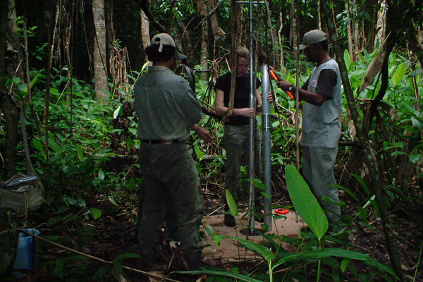 Long-term ecological work in Kodagu, India with Dr. Terry Brncic. Photo courtesy of Shonil Bhagwat.