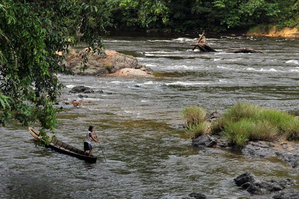 Remote village river in Kalimantan. Photo courtesy of Anne-Sophie Pellier.