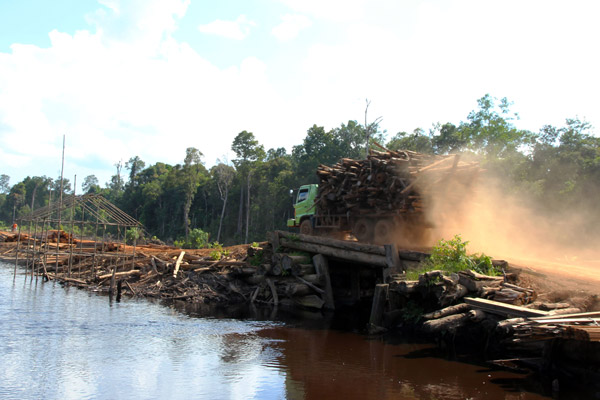Logging truck. Photo courtesy of Anne-Sophie Pellier.