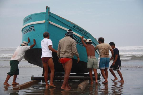 Saving Peru's sea turtles and marine birds ...