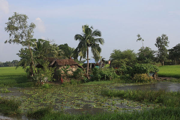 House and small farm on an island in the Sundarbans. Photo by: Arne Hückelheim