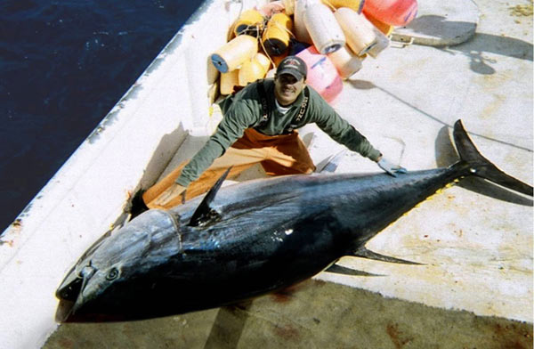 Large Atlantic bluefin tuna on deck. Photo by: U.S. Federal Government.