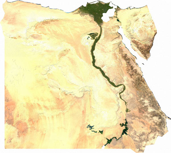 The human-inhabited area of Egypt takes up just 3.5 percent of the country's total land. Beyond the Nile delta only the hardiest of desert animals survive. Image by: Wikipedia Commons.