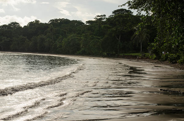 Beach in Bangkukuk. Photo courtesy of Tom Miller.
