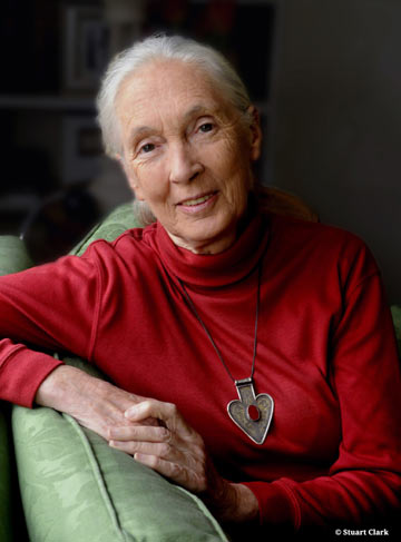 Jane Goodall. Photo by: Stuart Clarke.