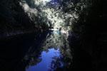 Crystal clear water of Bonito's Lagoa Misteriosa [bonito_0035]