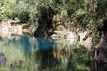 Crystal clear water of Bonito's Lagoa Misteriosa, a limestone sinkhole [bonito_0037]