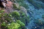 Crystal clear water of Bonito's 'Mystery Lagoon' [bonito_0039]