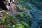 Crystal clear water of Bonito's 'Mystery Lagoon', a collapsed limestone cave