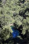 Bonito's 'Mystery Lagoon' [bonito_0052]