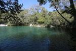 Crystal clear water of the Rio da Prata [bonito_0128]